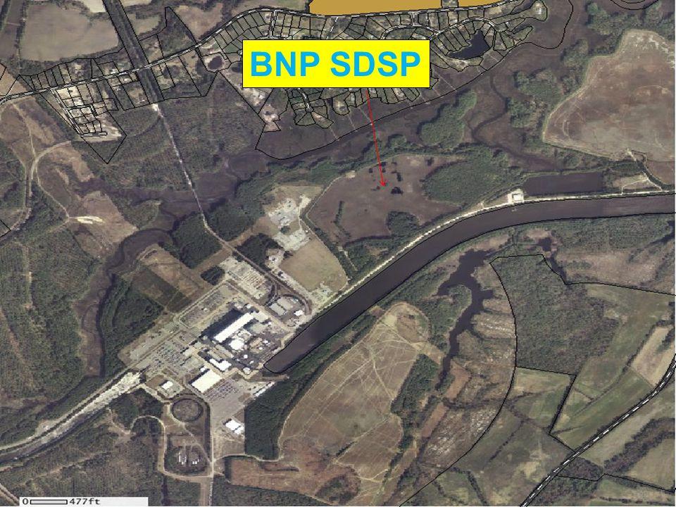 BNP SDSP
