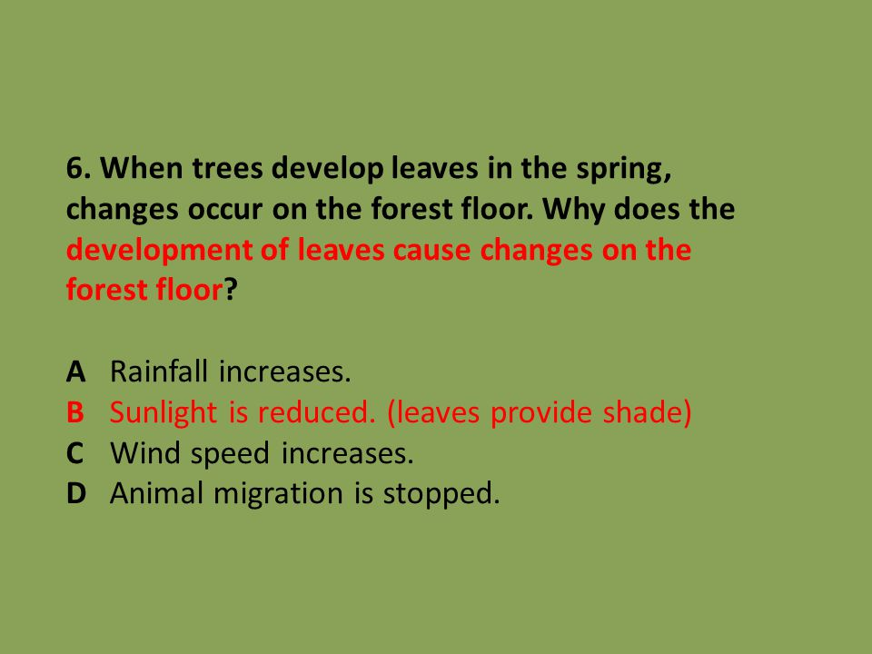 6. When trees develop leaves in the spring, changes occur on the forest floor. Why does the development of leaves cause changes on the forest floor? A