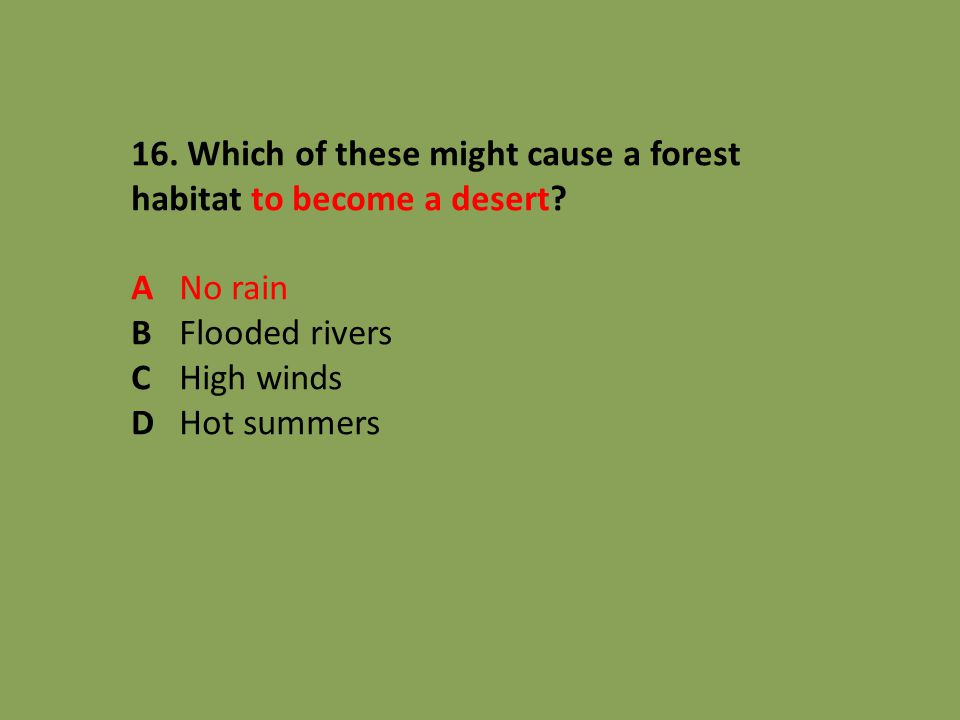 16. Which of these might cause a forest habitat to become a desert? ANo rain BFlooded rivers CHigh winds DHot summers