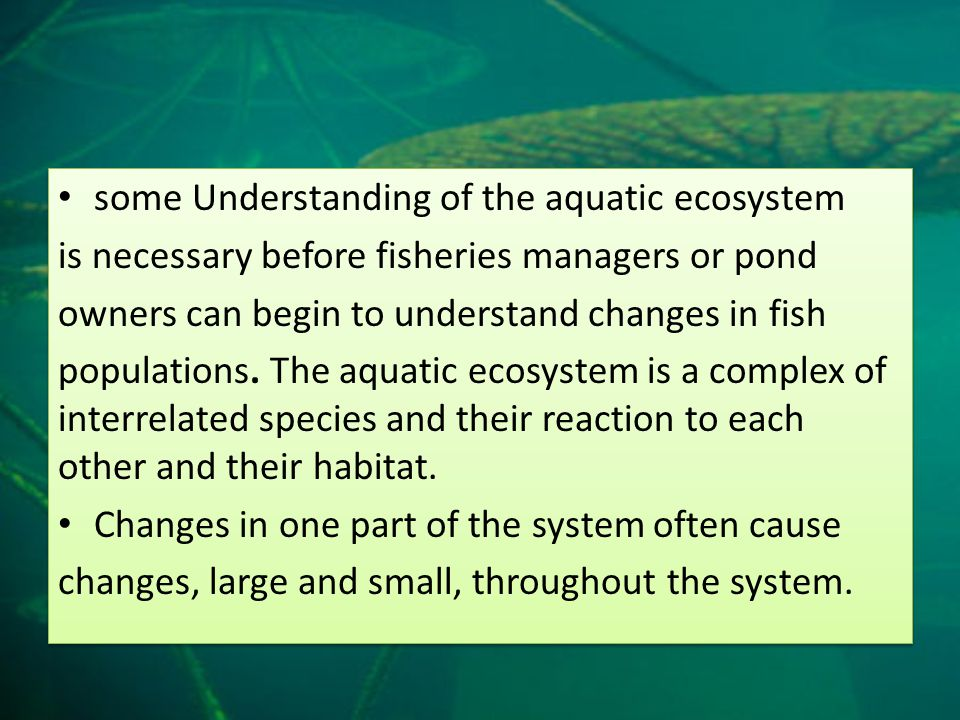Eradication of aquatic plants in a pond with a healthy large mouth bass population is a good example of this concept.
