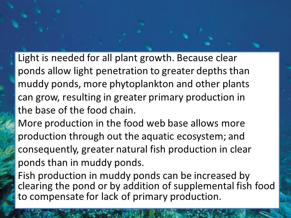 Light is needed for all plant growth.
