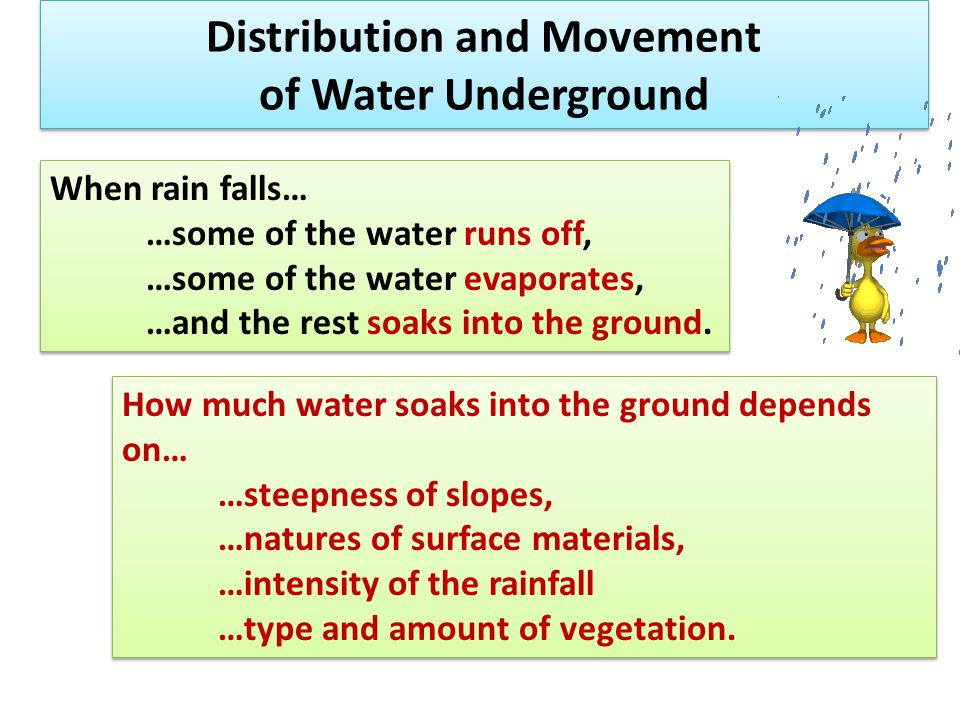 Distribution and Movement of Water Underground When rain falls… …some of the water runs off, …some of the water evaporates, …and the rest soaks into t