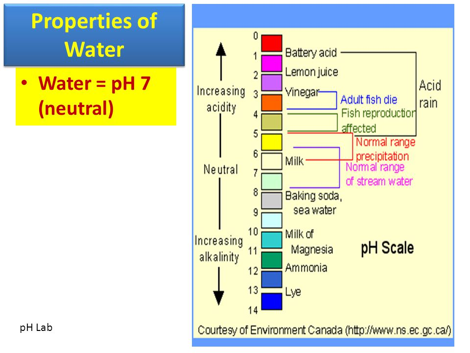 Structure of the Hydrosphere 97% of all water on Earth is in the oceans (80% on EOG) Salt Water Nonpotable Potable = drinkable Nonpotable = not drinkable