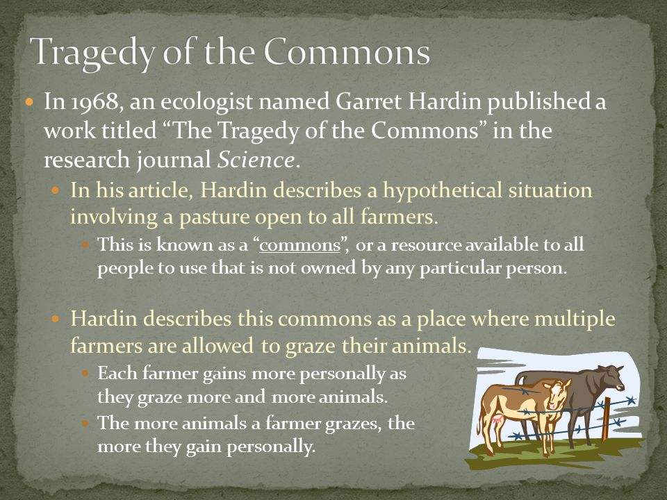In 1968, an ecologist named Garret Hardin published a work titled The Tragedy of the Commons in the research journal Science.