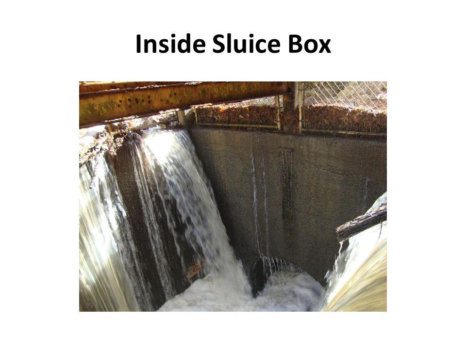 Inside Sluice Box