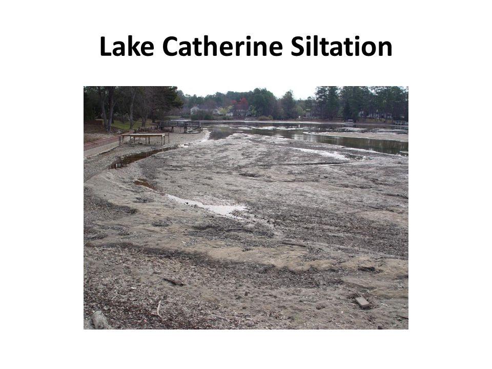 Lake Catherine Siltation