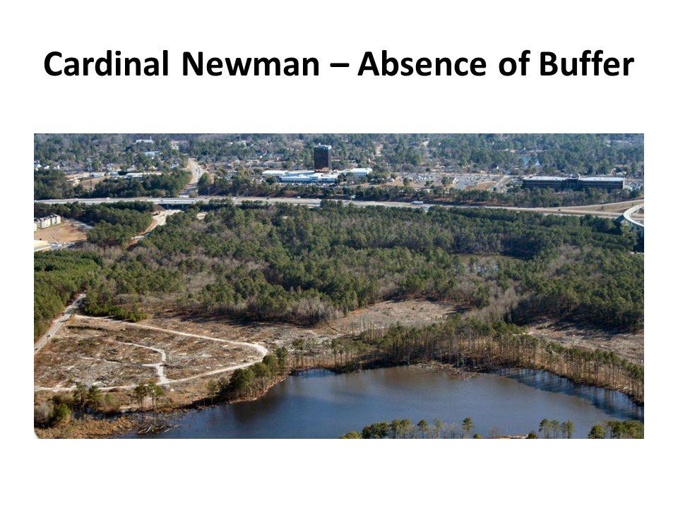 Cardinal Newman – Absence of Buffer