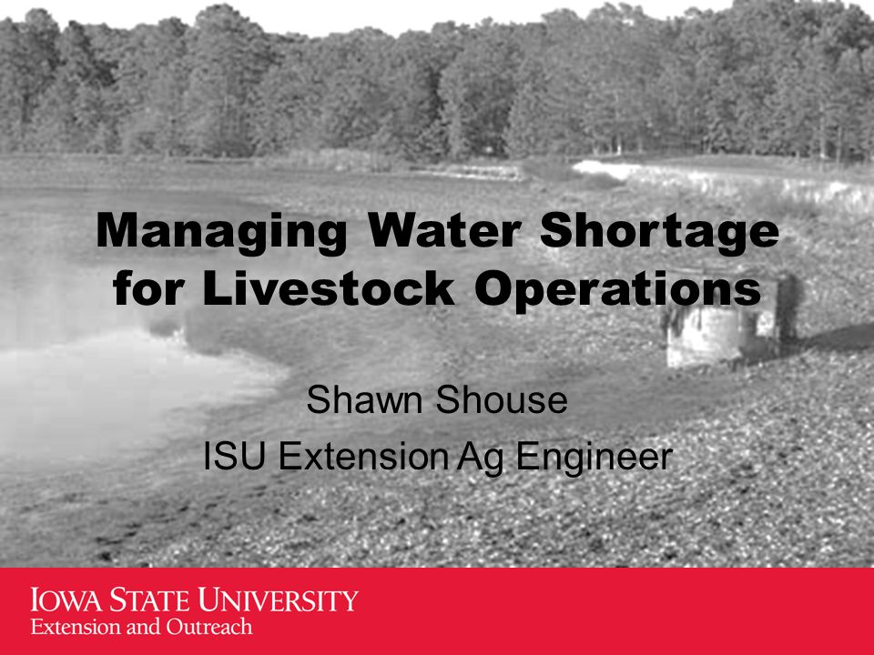 Managing Water Shortage for Livestock Operations Shawn Shouse ISU Extension Ag Engineer