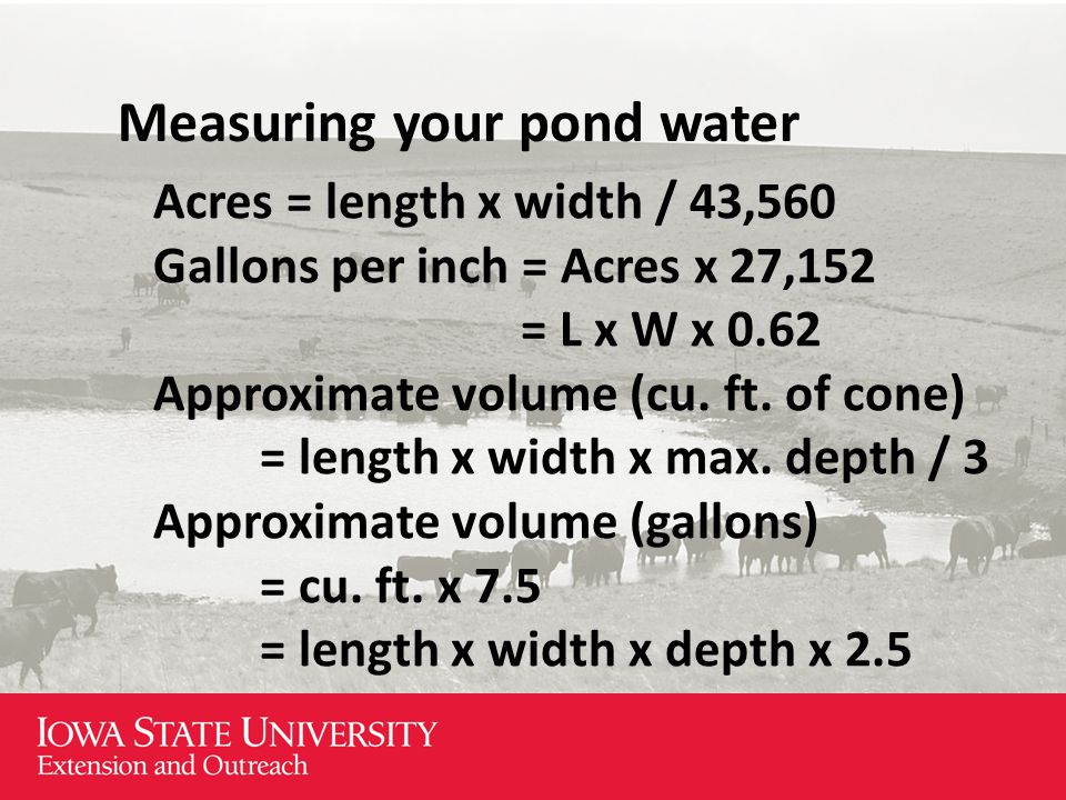 Measuring your pond water Acres = length x width / 43,560 Gallons per inch = Acres x 27,152 = L x W x 0.62 Approximate volume (cu.