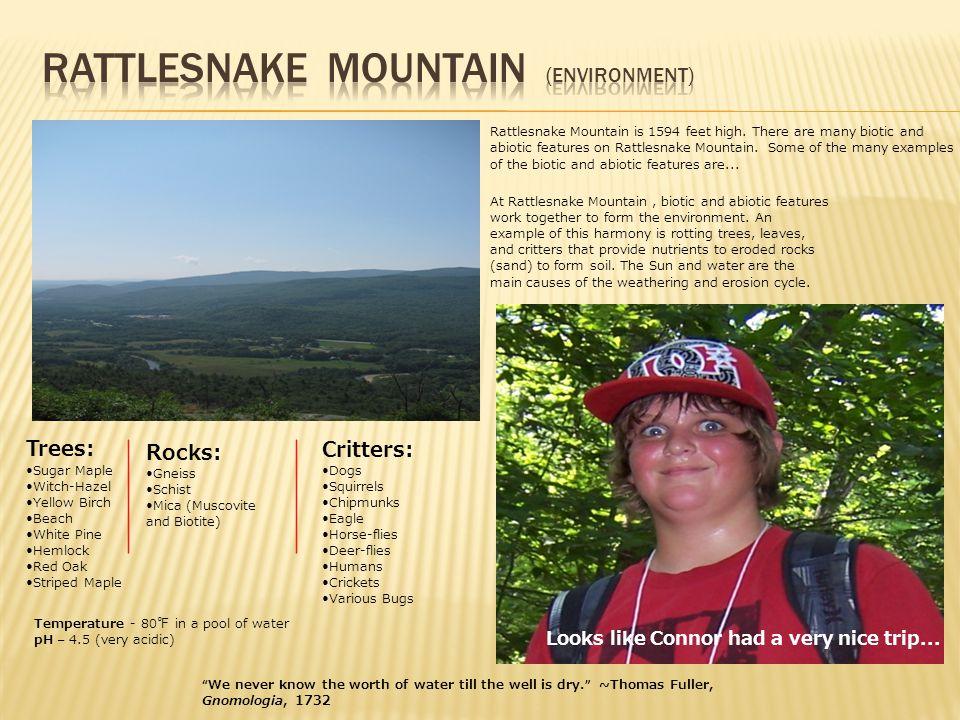 Rattlesnake Mountain is 1594 feet high.