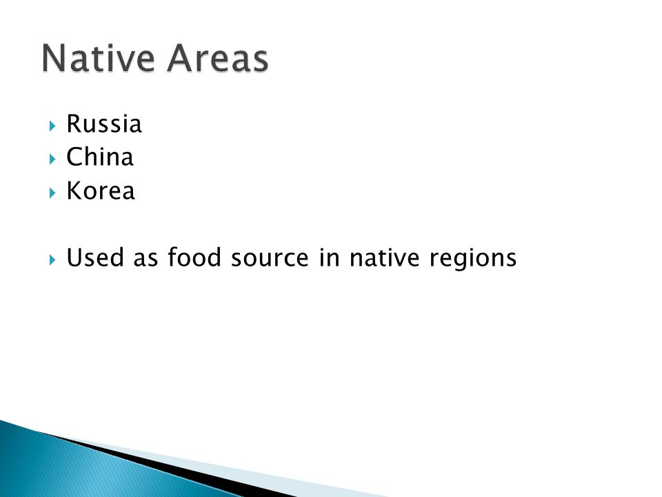 Russia  China  Korea  Used as food source in native regions