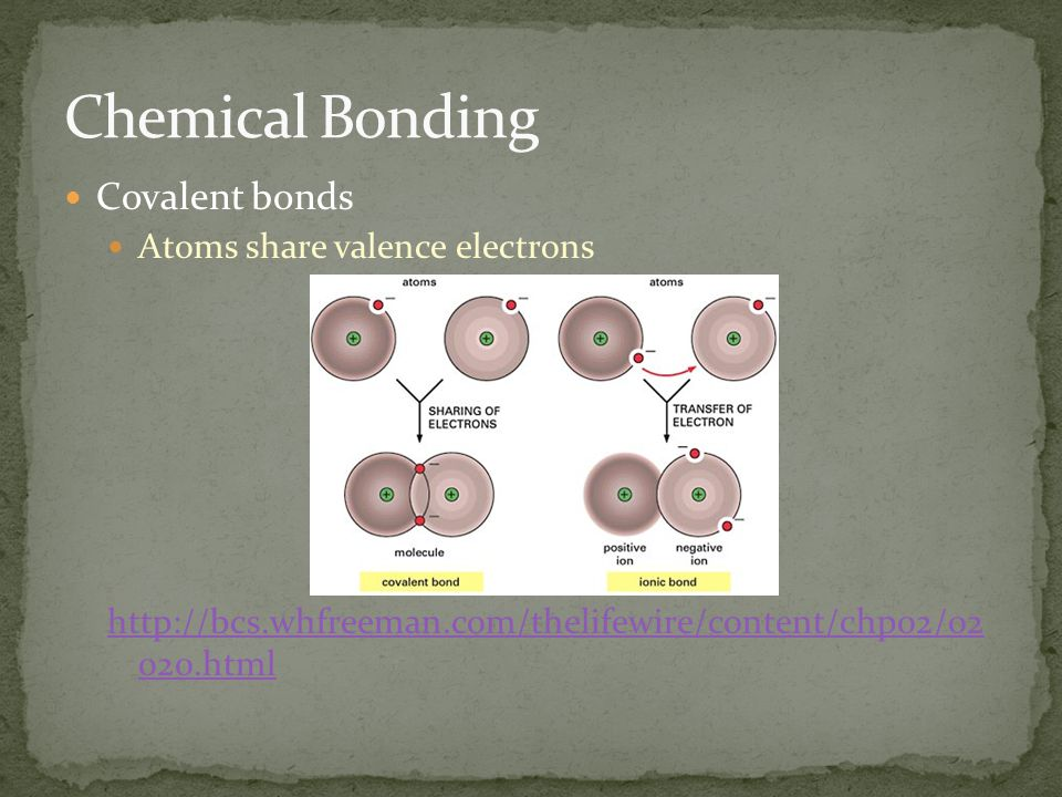 Covalent bonds Atoms share valence electrons http://bcs.whfreeman.com/thelifewire/content/chp02/02 020.html