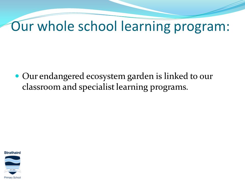 Our whole school learning program: Our endangered ecosystem garden is linked to our classroom and specialist learning programs.