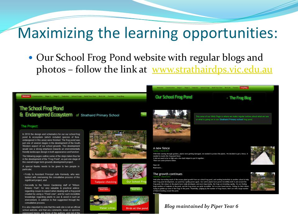 Maximizing the learning opportunities: Our School Frog Pond website with regular blogs and photos – follow the link at www.strathairdps.vic.edu.auwww.strathairdps.vic.edu.au Blog maintained by Piper Year 6