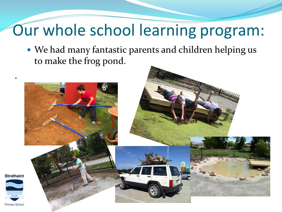 Our whole school learning program: We had many fantastic parents and children helping us to make the frog pond..