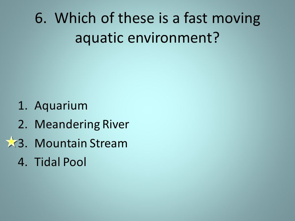 6.Which of these is a fast moving aquatic environment.