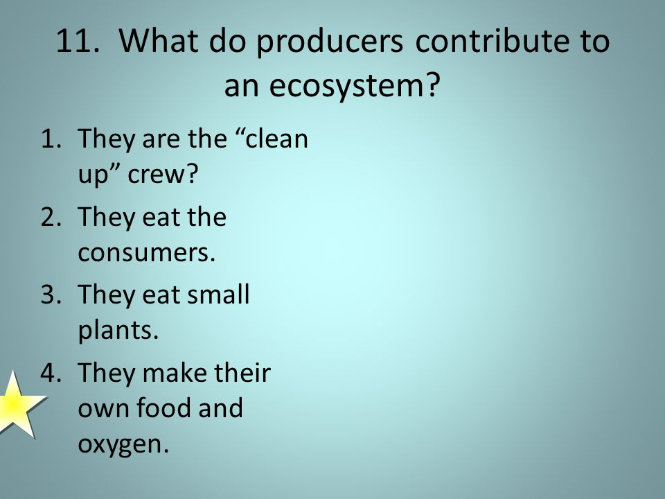 11. What do producers contribute to an ecosystem.