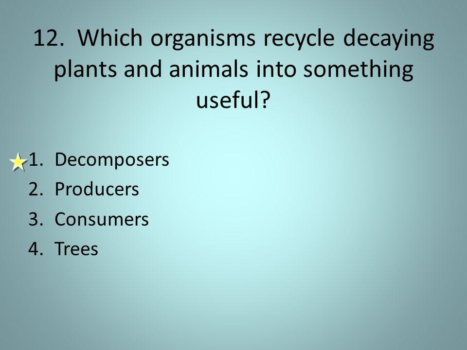 12. Which organisms recycle decaying plants and animals into something useful.