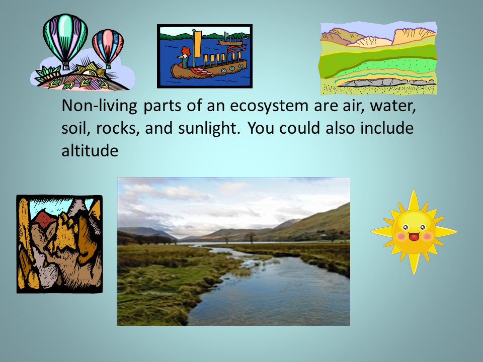 Non-living parts of an ecosystem are air, water, soil, rocks, and sunlight. You could also include altitude