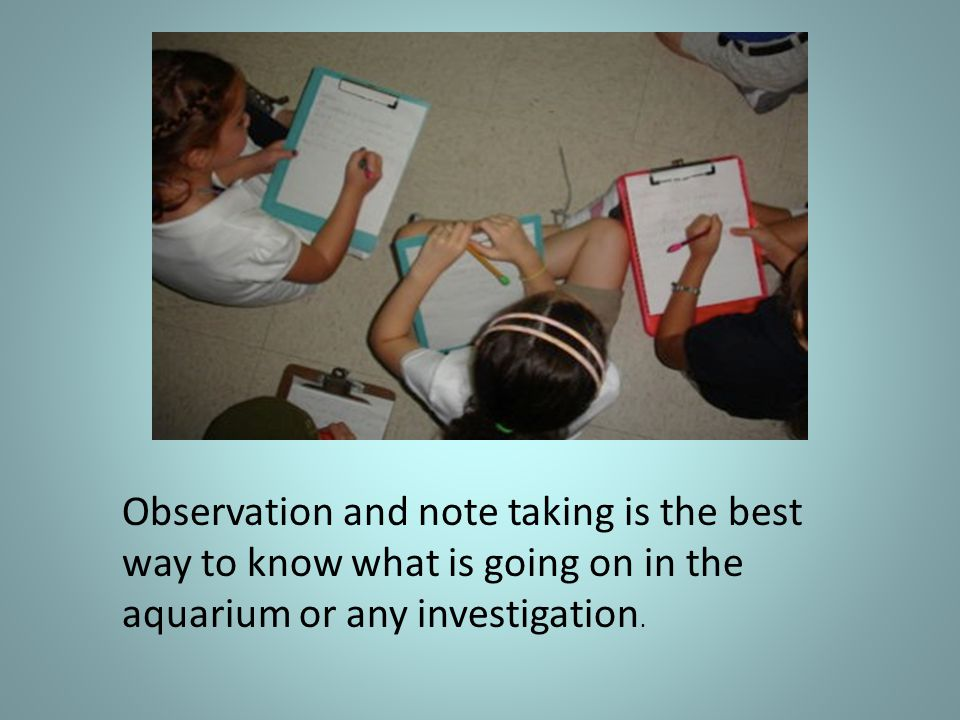 Observation and note taking is the best way to know what is going on in the aquarium or any investigation.
