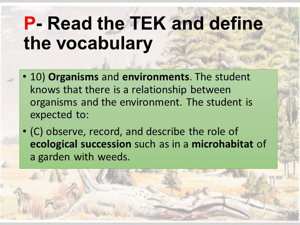 P- Read the TEK and define the vocabulary 10) Organisms and environments. The student knows that there is a relationship between organisms and the env