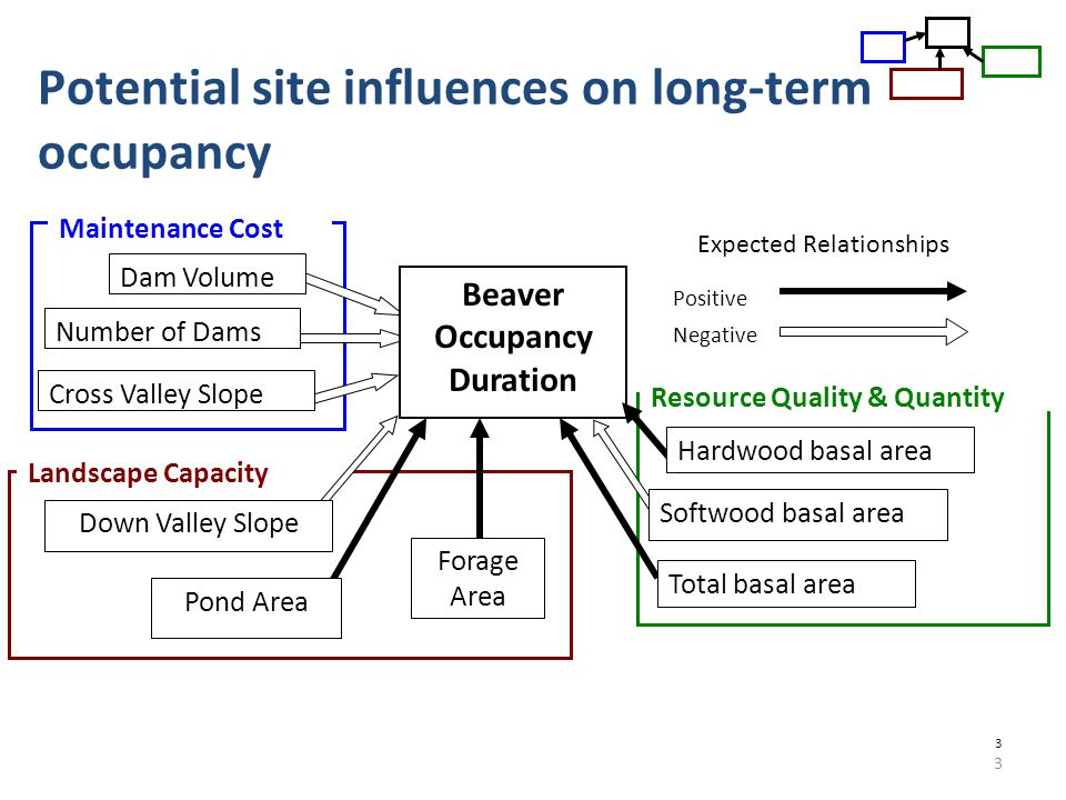 3 3 Potential site influences on long-term occupancy Maintenance Cost Dam Volume Number of Dams Cross Valley Slope Landscape Capacity Down Valley Slope Forage Area Pond Area Positive Negative Beaver Occupancy Duration Resource Quality & Quantity Hardwood basal area Softwood basal area Total basal area Expected Relationships