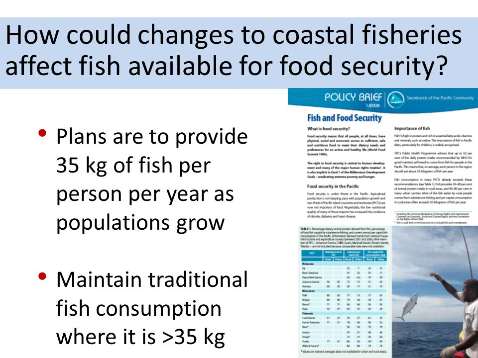 How could changes to coastal fisheries affect fish available for food security? Plans are to provide 35 kg of fish per person per year as populations