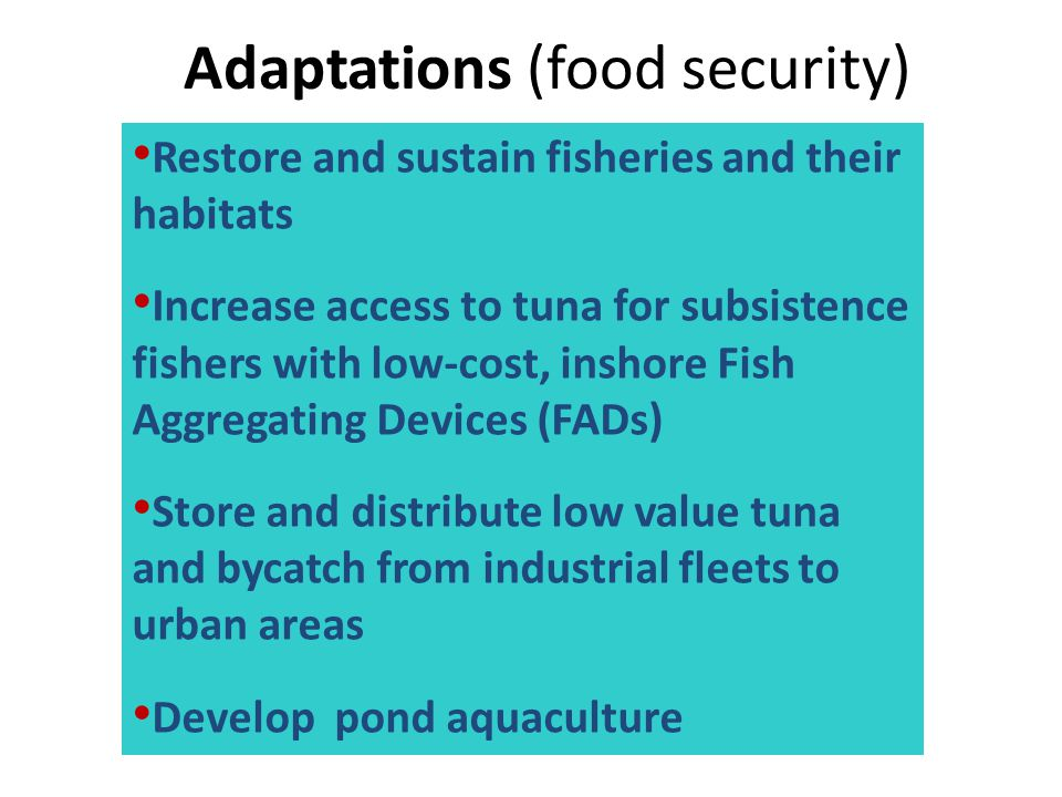 Adaptations (food security) Restore and sustain fisheries and their habitats Increase access to tuna for subsistence fishers with low-cost, inshore Fi