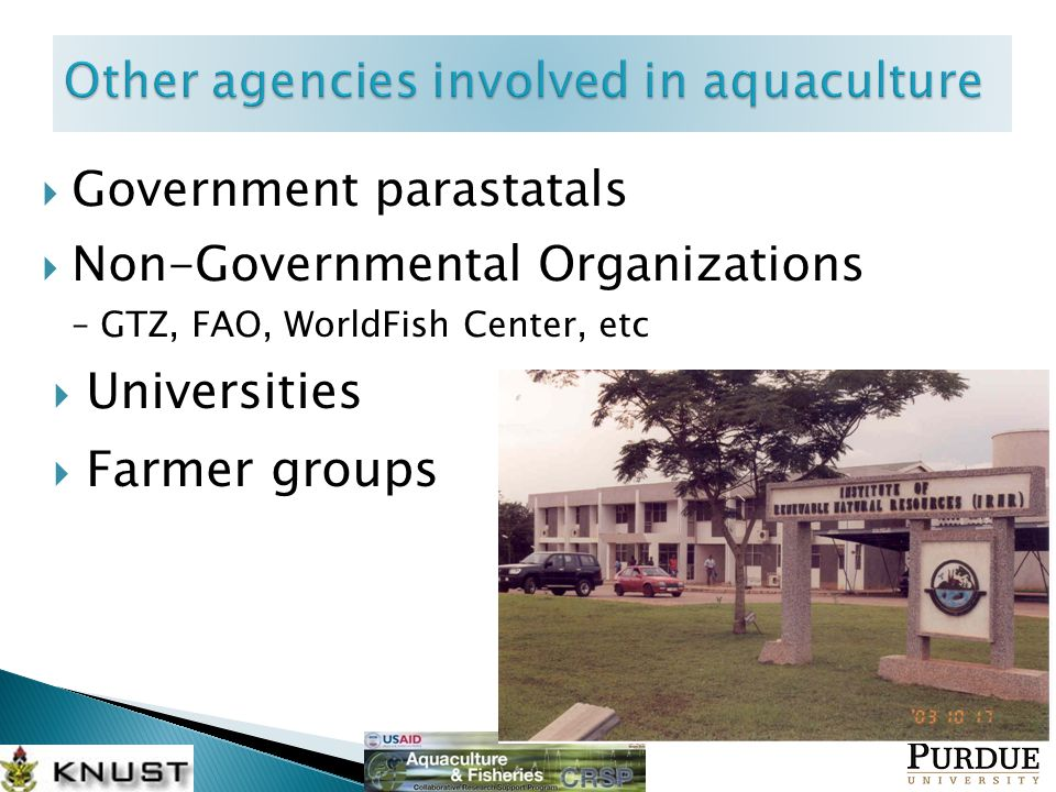  Government parastatals  Non-Governmental Organizations – GTZ, FAO, WorldFish Center, etc  Universities  Farmer groups