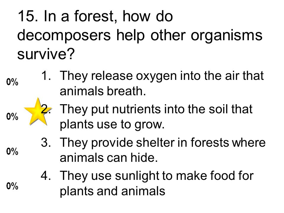 15. In a forest, how do decomposers help other organisms survive.