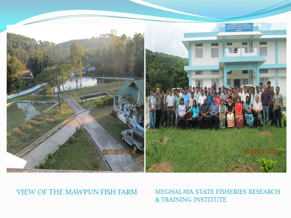 VIEW OF THE MAWPUN FISH FARM MEGHALAYA STATE FISHERIES RESEARCH & TRAINING INSTITUTE