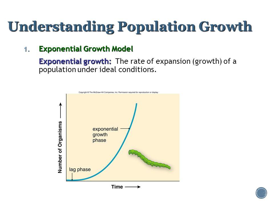 Understanding Population Growth 1. Exponential Growth Model Exponential growth: Exponential growth: The rate of expansion (growth) of a population und
