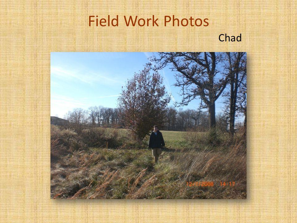 Field Work Photos Chad