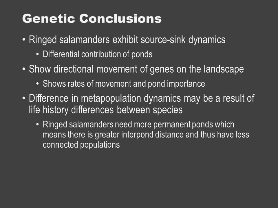 Genetic Conclusions Ringed salamanders exhibit source-sink dynamics Differential contribution of ponds Show directional movement of genes on the landscape Shows rates of movement and pond importance Difference in metapopulation dynamics may be a result of life history differences between species Ringed salamanders need more permanent ponds which means there is greater interpond distance and thus have less connected populations