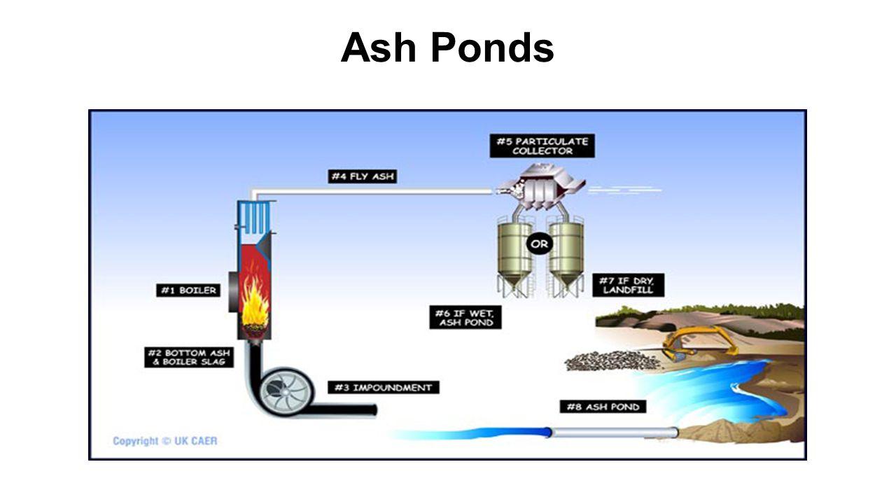 Ash Ponds