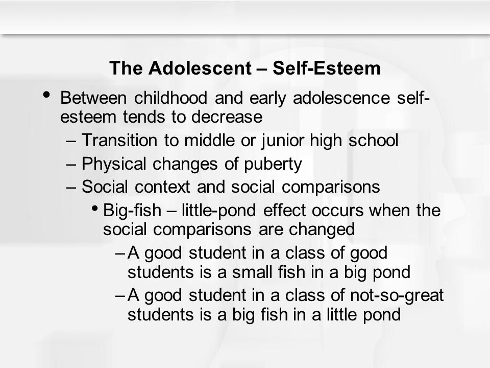 The Adolescent – Self-Esteem Between childhood and early adolescence self- esteem tends to decrease –Transition to middle or junior high school –Physi