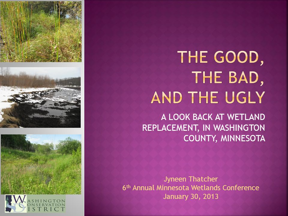 A LOOK BACK AT WETLAND REPLACEMENT, IN WASHINGTON COUNTY, MINNESOTA Jyneen Thatcher 6 th Annual Minnesota Wetlands Conference January 30, 2013