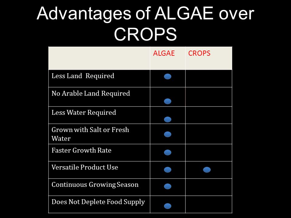 Advantages of ALGAE over CROPS ALGAECROPS Less Land Required No Arable Land Required Less Water Required Grown with Salt or Fresh Water Faster Growth