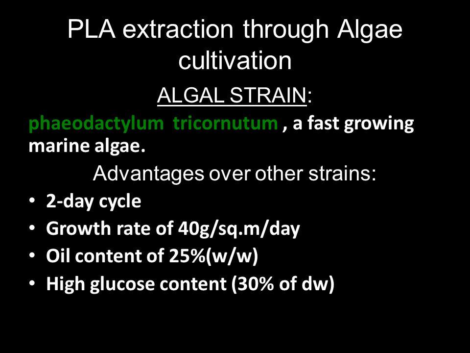 PLA extraction through Algae cultivation ALGAL STRAIN: phaeodactylum tricornutum, a fast growing marine algae. Advantages over other strains: 2-day cy