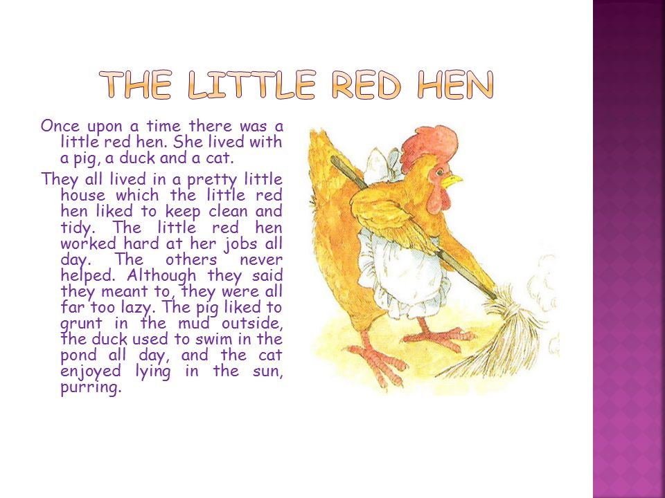 Once upon a time there was a little red hen. She lived with a pig, a duck and a cat.