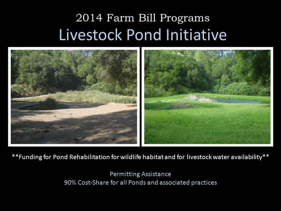 2014 Farm Bill Programs Livestock Pond Initiative **Funding for Pond Rehabilitation for wildlife habitat and for livestock water availability** Permitting Assistance 90% Cost-Share for all Ponds and associated practices