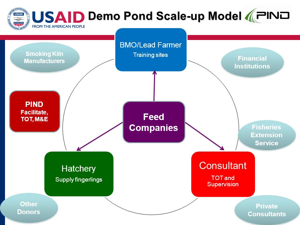 BMO/Lead Farmer Training sites Consultant TOT and Supervision Hatchery Supply fingerlings Feed Companies Fisheries Extension Service Private Consultants Financial Institutions Smoking Kiln Manufacturers Other Donors PIND Facilitate, TOT, M&E Demo Pond Scale-up Model
