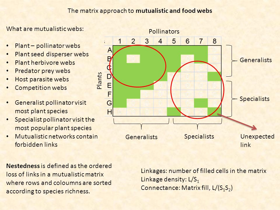 The matrix approach to mutualistic and food webs What are mutualistic webs: Plant – pollinator webs Plant seed disperser webs Plant herbivore webs Predator prey webs Host parasite webs Competition webs Pollinators Plants Nestedness is defined as the ordered loss of links in a mutualistic matrix where rows and coloumns are sorted according to species richness.