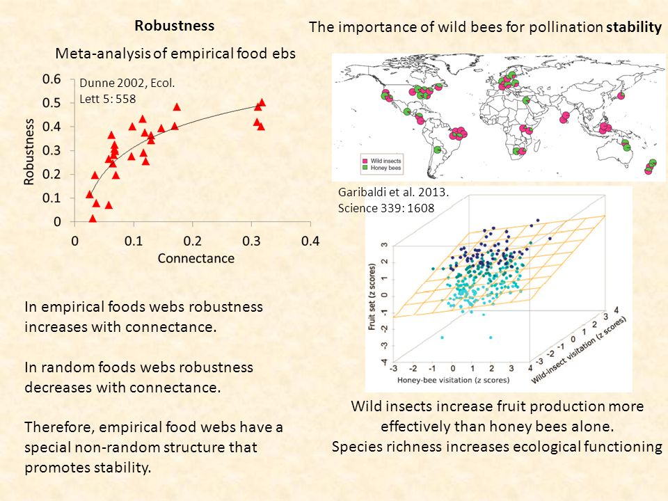 Robustness Dunne 2002, Ecol. Lett 5: 558 In empirical foods webs robustness increases with connectance. In random foods webs robustness decreases with