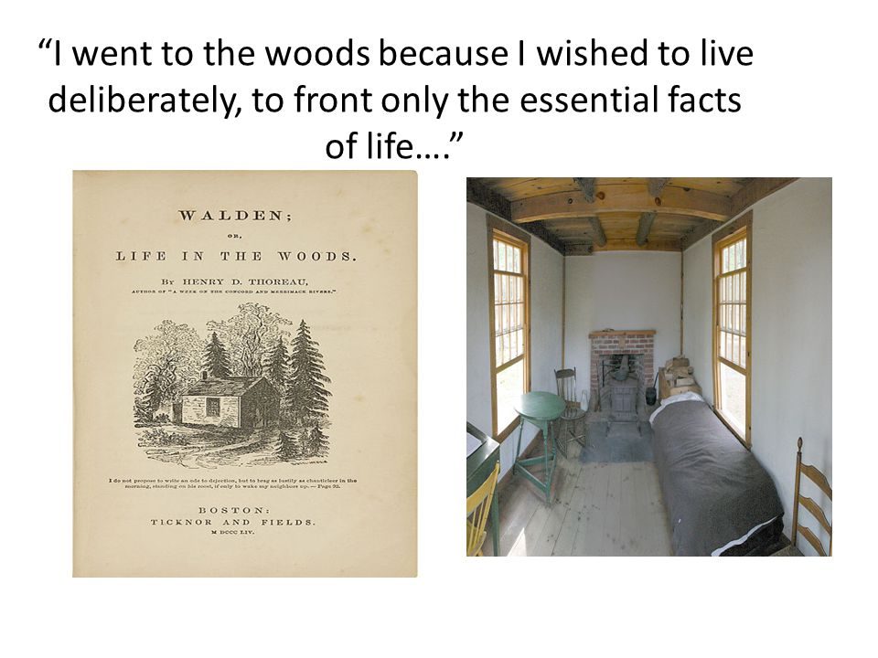 I went to the woods because I wished to live deliberately, to front only the essential facts of life….