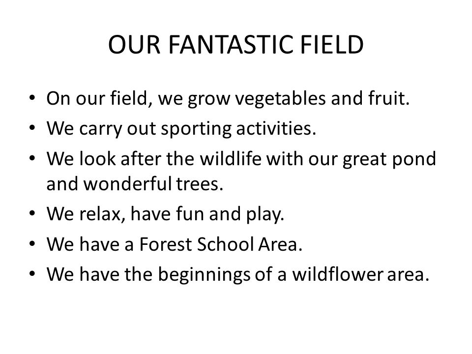 OUR FANTASTIC FIELD On our field, we grow vegetables and fruit.