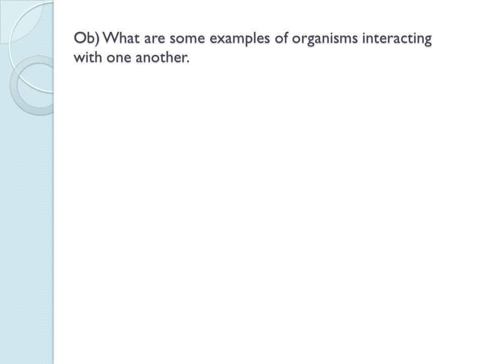 Ob) What are some examples of organisms interacting with one another.