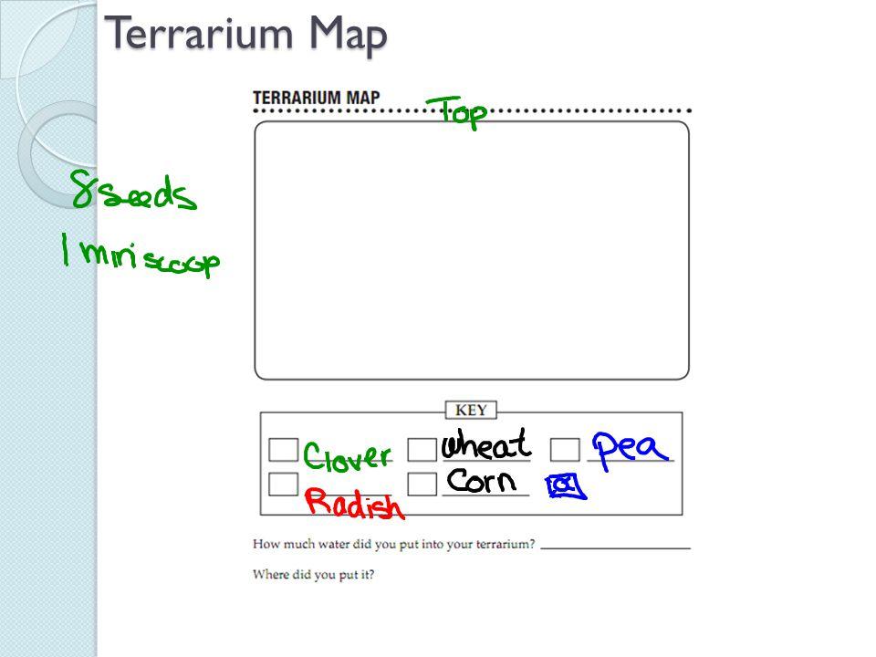 Terrarium Map