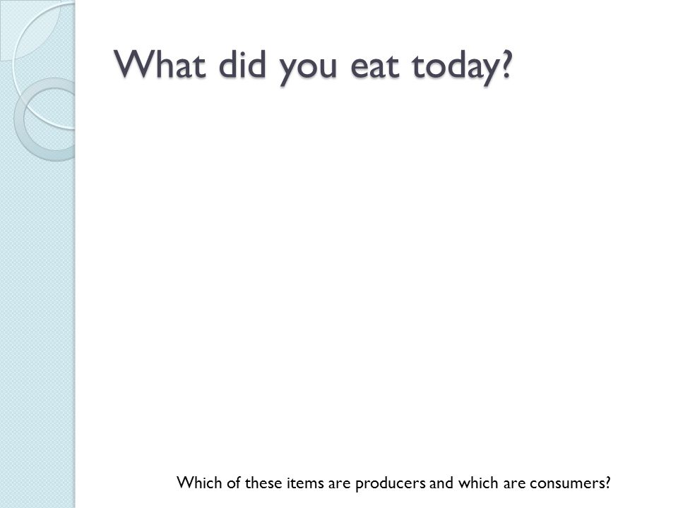 What did you eat today? Which of these items are producers and which are consumers?