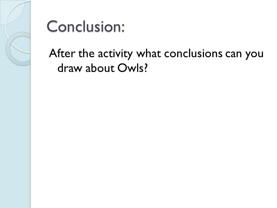 Conclusion: After the activity what conclusions can you draw about Owls?